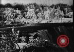 Image of Niagara Falls United States USA, 1896, second 7 stock footage video 65675071521