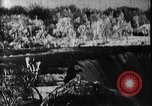Image of Niagara Falls United States USA, 1896, second 10 stock footage video 65675071521