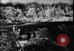 Image of Niagara Falls United States USA, 1896, second 16 stock footage video 65675071521