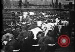 Image of Cattle to slaughter Chicago Illinois USA, 1897, second 10 stock footage video 65675071535