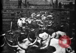 Image of Cattle to slaughter Chicago Illinois USA, 1897, second 14 stock footage video 65675071535