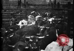 Image of Cattle to slaughter Chicago Illinois USA, 1897, second 16 stock footage video 65675071535
