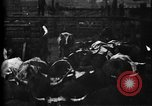 Image of Cattle to slaughter Chicago Illinois USA, 1897, second 19 stock footage video 65675071535