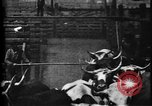 Image of Cattle to slaughter Chicago Illinois USA, 1897, second 23 stock footage video 65675071535