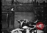 Image of Cattle to slaughter Chicago Illinois USA, 1897, second 24 stock footage video 65675071535
