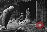 Image of Kaiser Wilhelm II in exile Holland, 1933, second 45 stock footage video 65675071555