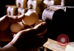 Image of harvesting chickens fruits and vegatables United States USA, 1956, second 24 stock footage video 65675071652