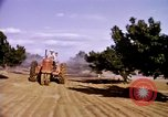 Image of harvesting chickens fruits and vegatables United States USA, 1956, second 38 stock footage video 65675071652