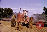 Image of harvesting chickens fruits and vegatables United States USA, 1956, second 48 stock footage video 65675071652