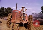 Image of harvesting chickens fruits and vegatables United States USA, 1956, second 49 stock footage video 65675071652