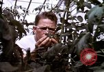 Image of harvesting chickens fruits and vegatables United States USA, 1956, second 56 stock footage video 65675071652