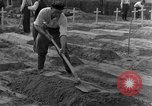 Image of completes graves Germany, 1945, second 15 stock footage video 65675071657