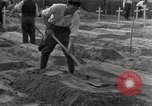 Image of completes graves Germany, 1945, second 17 stock footage video 65675071657