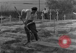 Image of completes graves Germany, 1945, second 29 stock footage video 65675071657