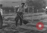 Image of completes graves Germany, 1945, second 30 stock footage video 65675071657