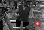 Image of completes graves Germany, 1945, second 45 stock footage video 65675071657