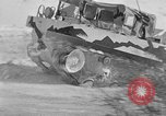 Image of weasel United States USA, 1943, second 7 stock footage video 65675071682