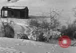 Image of weasel United States USA, 1943, second 37 stock footage video 65675071682