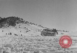 Image of weasel United States USA, 1943, second 61 stock footage video 65675071682