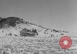 Image of weasel United States USA, 1943, second 62 stock footage video 65675071682