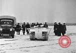 Image of weasel United States USA, 1943, second 41 stock footage video 65675071683