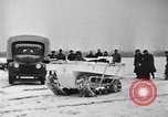 Image of weasel United States USA, 1943, second 43 stock footage video 65675071683