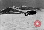 Image of weasel United States USA, 1943, second 52 stock footage video 65675071683