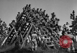 Image of 442nd Regimental Combat Team Mississippi United States USA, 1942, second 3 stock footage video 65675071693