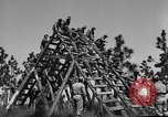 Image of 442nd Regimental Combat Team Mississippi United States USA, 1942, second 7 stock footage video 65675071693