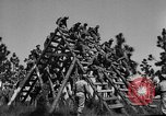 Image of 442nd Regimental Combat Team Mississippi United States USA, 1942, second 11 stock footage video 65675071693