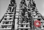 Image of 442nd Regimental Combat Team Mississippi United States USA, 1942, second 30 stock footage video 65675071693