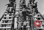 Image of 442nd Regimental Combat Team Mississippi United States USA, 1942, second 31 stock footage video 65675071693