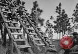 Image of 442nd Regimental Combat Team Mississippi United States USA, 1942, second 39 stock footage video 65675071693