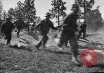 Image of 442nd Regimental Combat Team Mississippi United States USA, 1942, second 59 stock footage video 65675071693