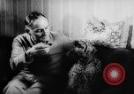 Image of poodles Bornhoeved Germany, 1962, second 25 stock footage video 65675071768