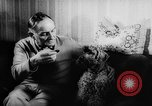 Image of poodles Bornhoeved Germany, 1962, second 26 stock footage video 65675071768