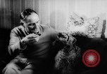 Image of poodles Bornhoeved Germany, 1962, second 30 stock footage video 65675071768