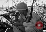 Image of 158th Infantry 2nd Battalion Arawe New Britain Papua New Guinea, 1943, second 12 stock footage video 65675071777