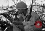 Image of 158th Infantry 2nd Battalion Arawe New Britain Papua New Guinea, 1943, second 14 stock footage video 65675071777