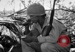 Image of 158th Infantry 2nd Battalion Arawe New Britain Papua New Guinea, 1943, second 16 stock footage video 65675071777