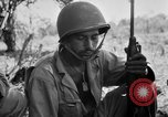 Image of 158th Infantry 2nd Battalion Arawe New Britain Papua New Guinea, 1943, second 50 stock footage video 65675071777