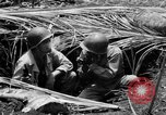 Image of 158th Infantry 2nd Battalion Arawe New Britain Papua New Guinea, 1943, second 26 stock footage video 65675071778