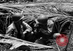 Image of 158th Infantry 2nd Battalion Arawe New Britain Papua New Guinea, 1943, second 27 stock footage video 65675071778
