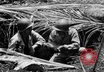 Image of 158th Infantry 2nd Battalion Arawe New Britain Papua New Guinea, 1943, second 28 stock footage video 65675071778