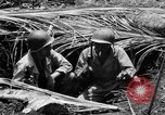 Image of 158th Infantry 2nd Battalion Arawe New Britain Papua New Guinea, 1943, second 29 stock footage video 65675071778