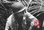Image of 158th Infantry 2nd Battalion Arawe New Britain Papua New Guinea, 1943, second 37 stock footage video 65675071778
