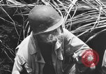 Image of 158th Infantry 2nd Battalion Arawe New Britain Papua New Guinea, 1943, second 38 stock footage video 65675071778