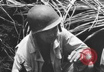 Image of 158th Infantry 2nd Battalion Arawe New Britain Papua New Guinea, 1943, second 39 stock footage video 65675071778
