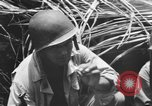 Image of 158th Infantry 2nd Battalion Arawe New Britain Papua New Guinea, 1943, second 40 stock footage video 65675071778