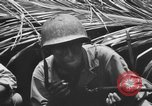 Image of 158th Infantry 2nd Battalion Arawe New Britain Papua New Guinea, 1943, second 42 stock footage video 65675071778